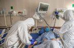 رشد سریع نمودار تعداد بیماران بستری کرونایی در گیلان